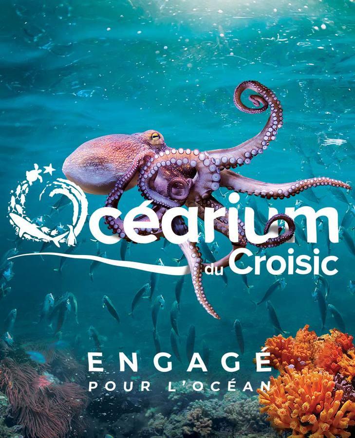 Océarium - Le grand aquarium du Croisic: pour votre sortie famille, avec  les enfants, en groupes, en Loire Atlantique