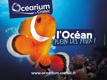 Poisson clown Ocearium